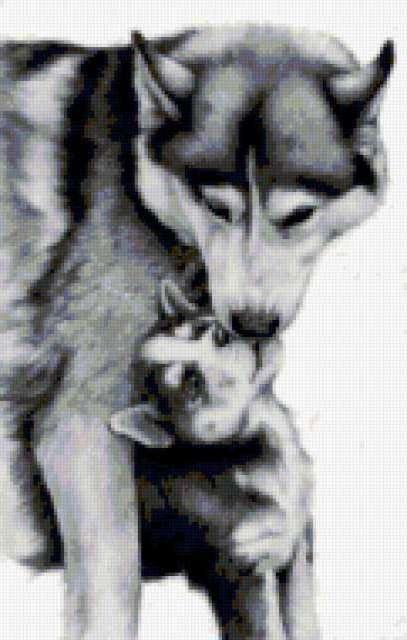 Нежность, животные, хищники