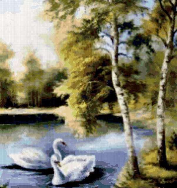 Белый лебедь на пруду, пейзаж,