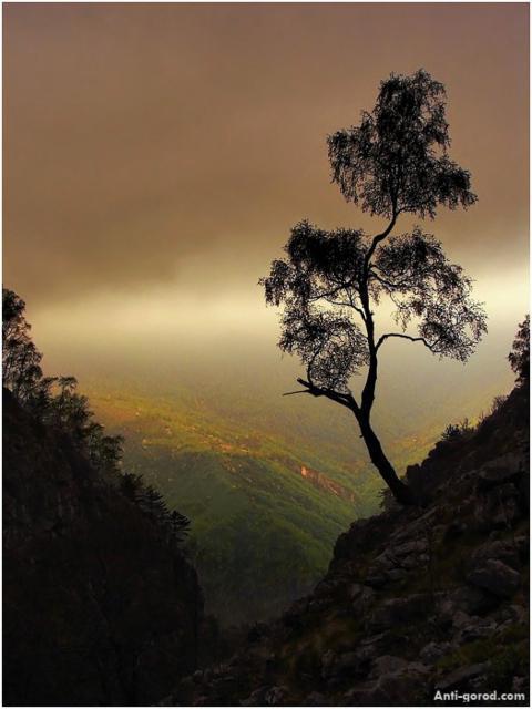 Вечер в горах, оригинал