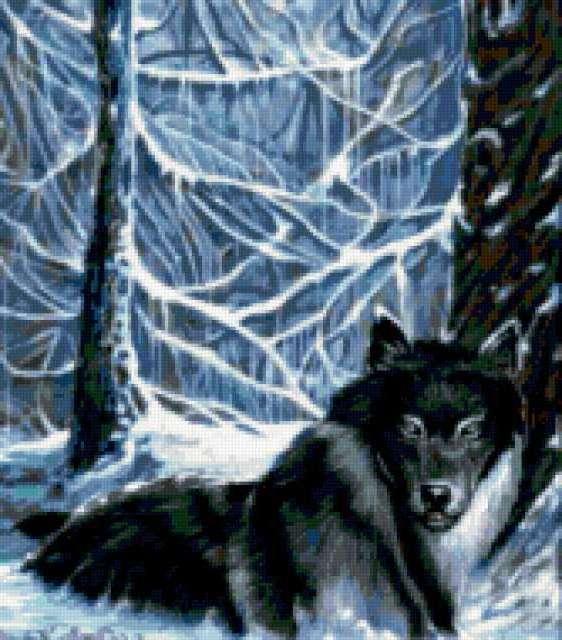 Волк в зимнем лесу,