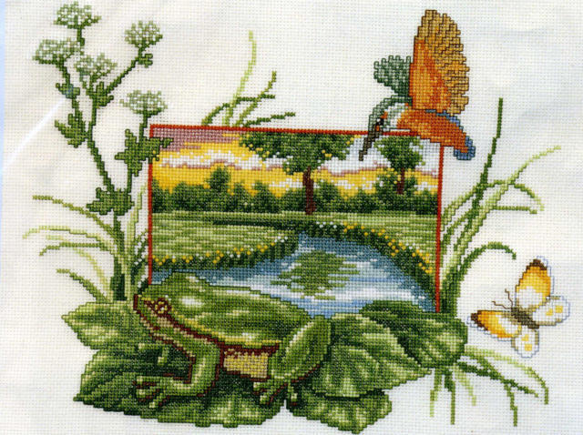 лето, болото, пруд, жаба,