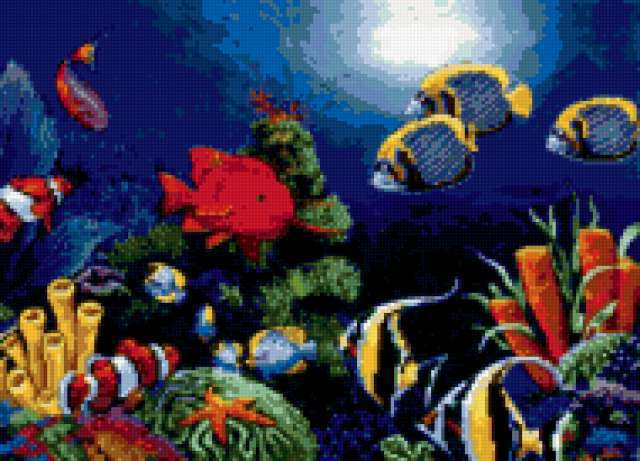 Морское дно, предпросмотр