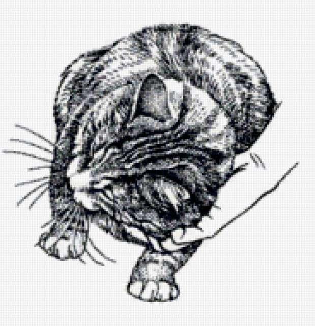 Ч-б кошки, предпросмотр