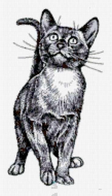 Ч-б кошки, живопись, животные,