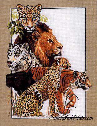 Животные Африки, животные