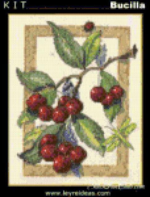 Вишни, натюрморт, кухня, вишни