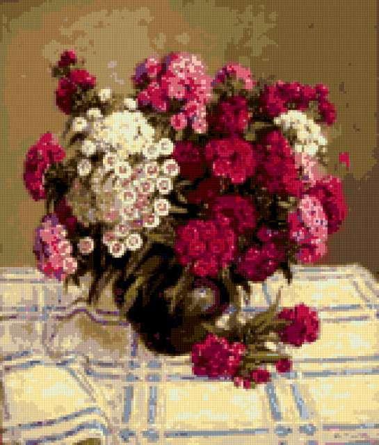 Букет турецкой гвоздики, цветы