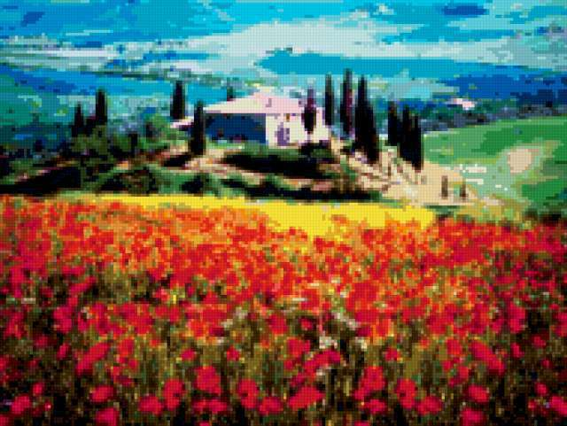 Тоскана, маки, поле, тоскана