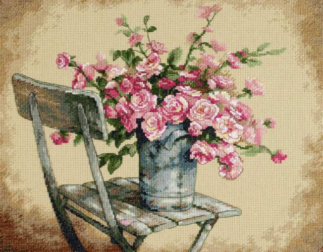 Садовые цветы, роза, роза,