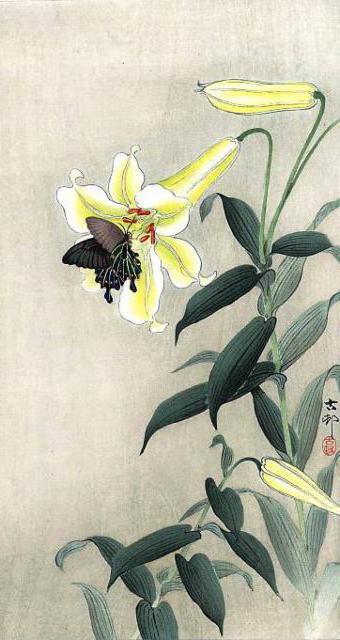 Японская графика, рисунок