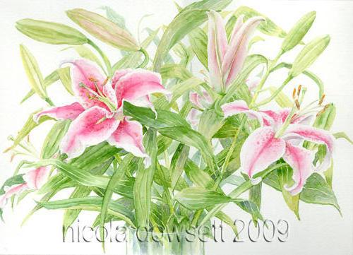 Розовые лилии, картина, цветы,