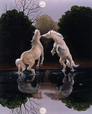 Танцующие кони, животные, кони