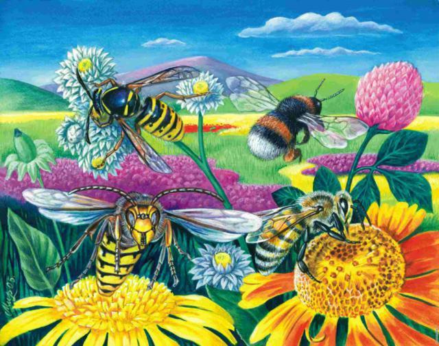 Опыление, цветы, насекомые