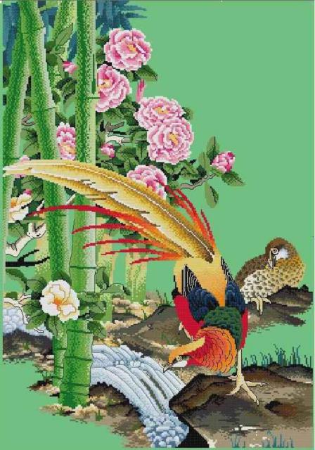 Фазаны, птицы, цветы, фазаны,