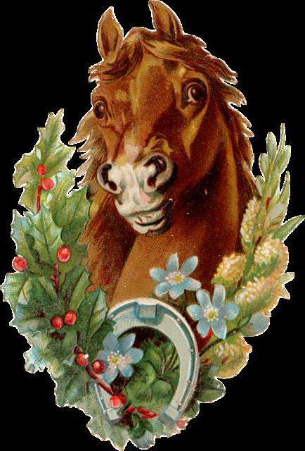 кони, конь, лошади, лошадь
