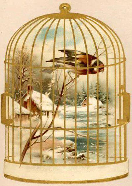 Птица в клетке, оригинал