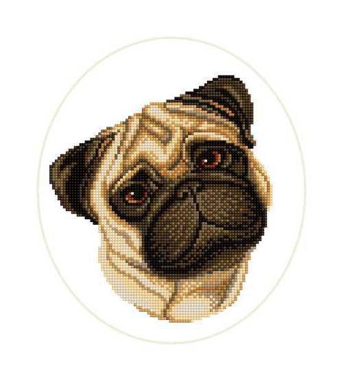 Портрет, животные, собака