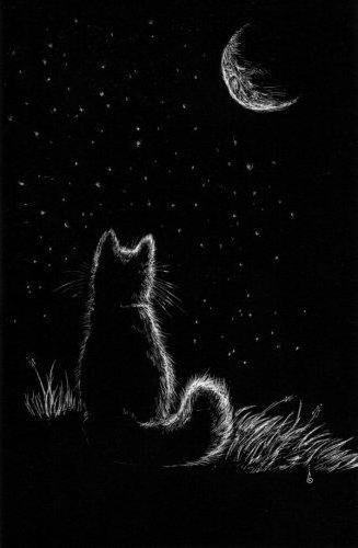 К схеме вышивки «Кошка и Луна»
