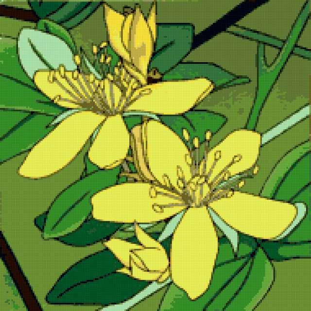 Жёлтые цветы, предпросмотр