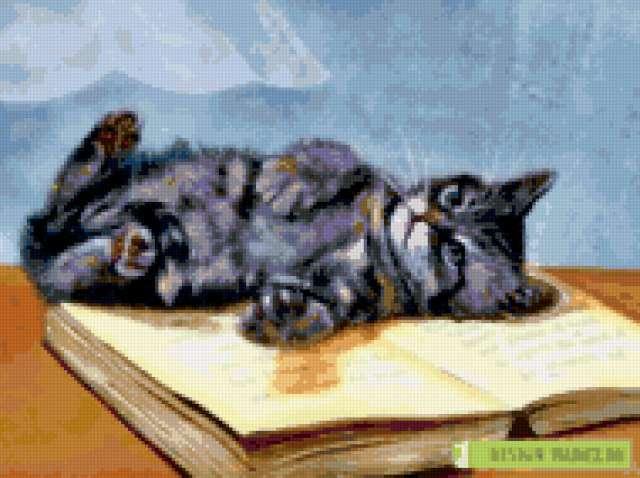 Кот и книга, предпросмотр
