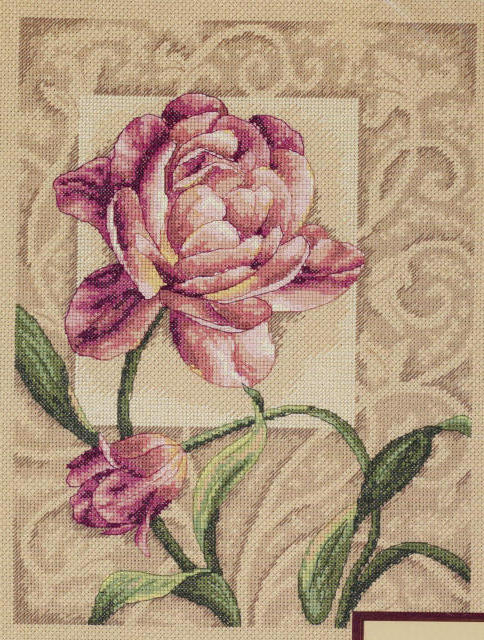 Пион, декор, цветы, пионы,