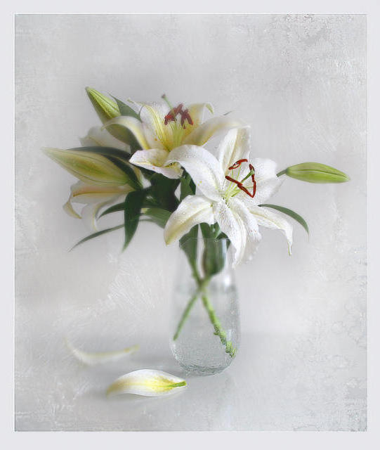 Белые лилии в вазе, оригинал