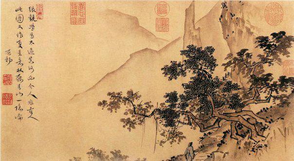 китай, бонсай, дерево,