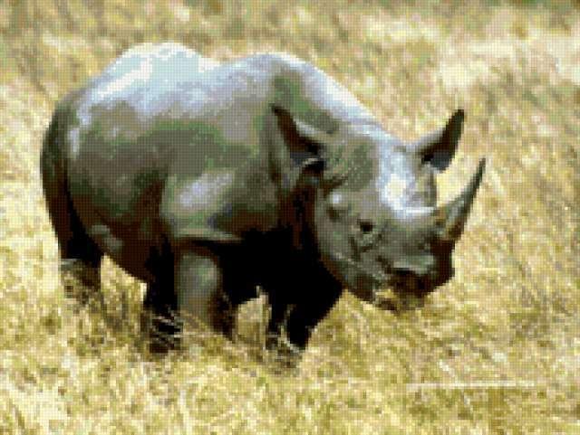 Носорог схема вышивки