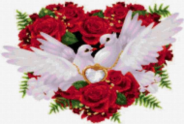 Свадебные голуби, предпросмотр