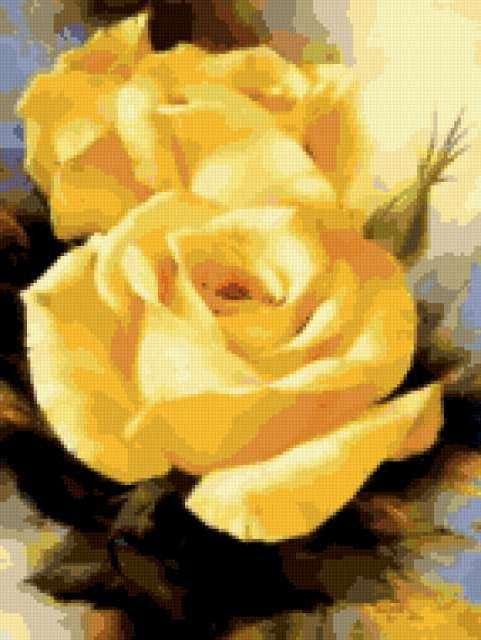 Пара желтых роз, розы, цветы