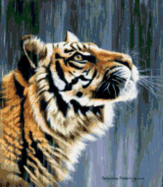 Тигр под дождем, предпросмотр