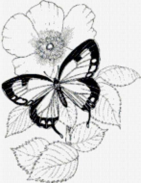 Ч-б бабочки, предпросмотр
