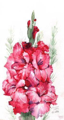 Гладиолусы, цветы, букет