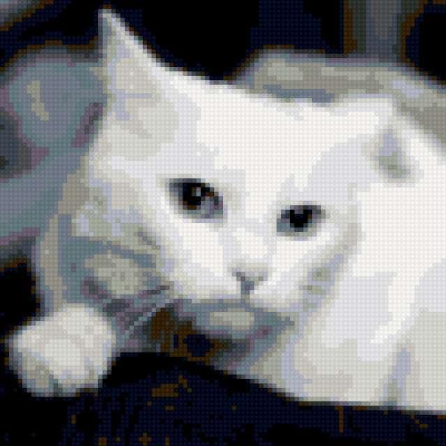 Белый кот, предпросмотр
