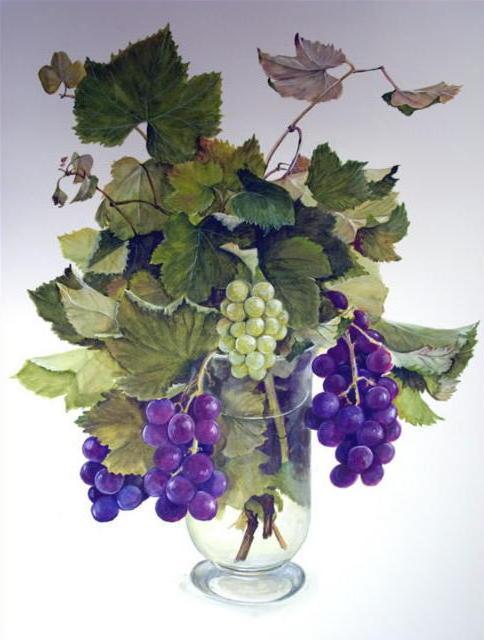 Букет винограда, натюрмортя