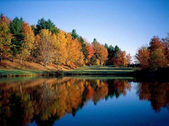 "Пейзаж ""Осень"", пейзаж, осень"