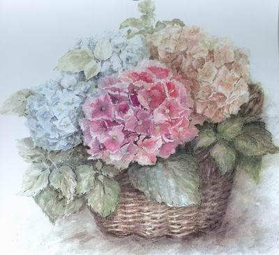 Гортензия, цветы, корзина