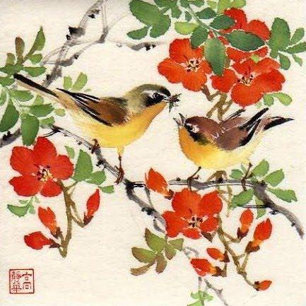 Птички на ветке птицы природа ветка