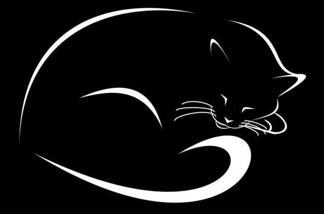 Спящий кот, оригинал