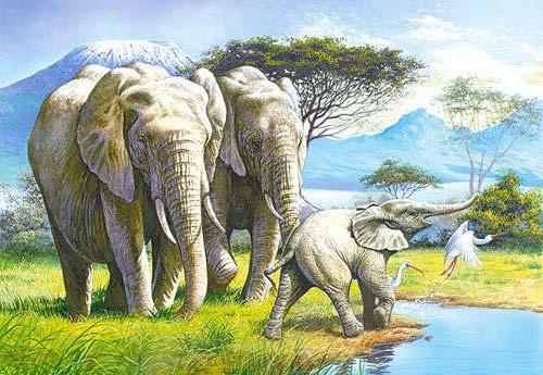 Семья слонов, слоны, семья,