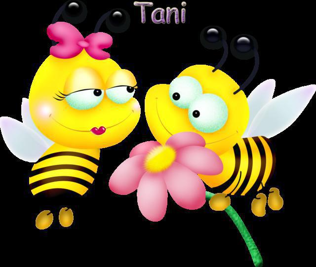 Пчелы, оригинал