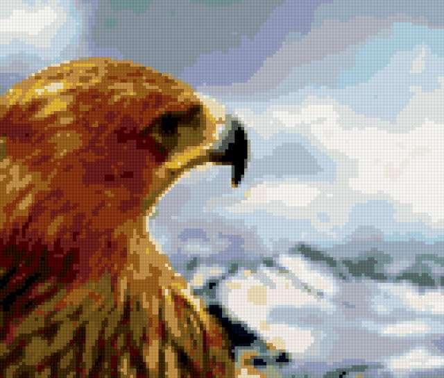 Царь птица - орел, орел