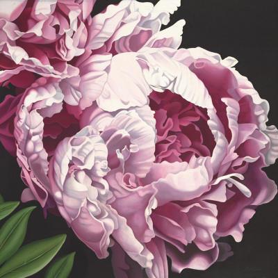 Подушка Пионы, пионы, цветы,