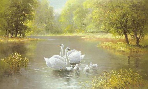 Лебеди на озере, оригинал