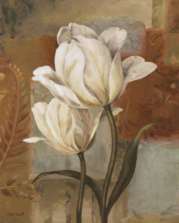 Белые тюльпаны, тюльпаны