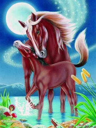 Лошадь и жеребёнок.,
