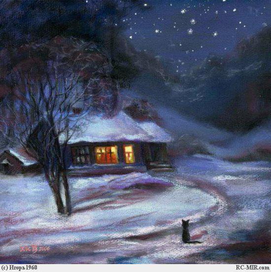 Одинокий зимний кот, пейзаж,