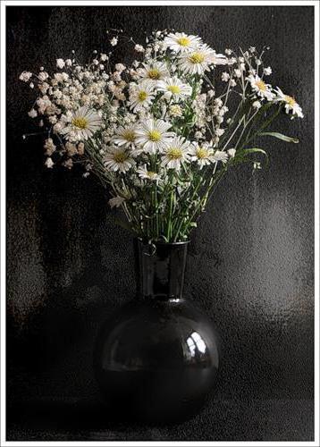 Цветы на чёрном фоне.