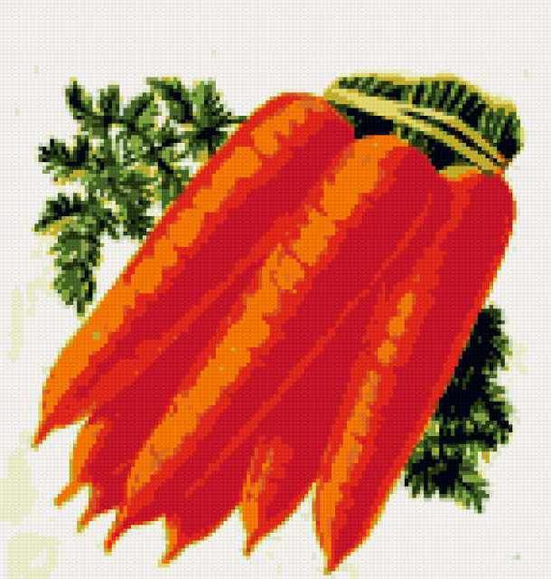Морковь, морковь, морковка