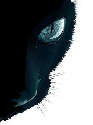 Черный кот, черный кот
